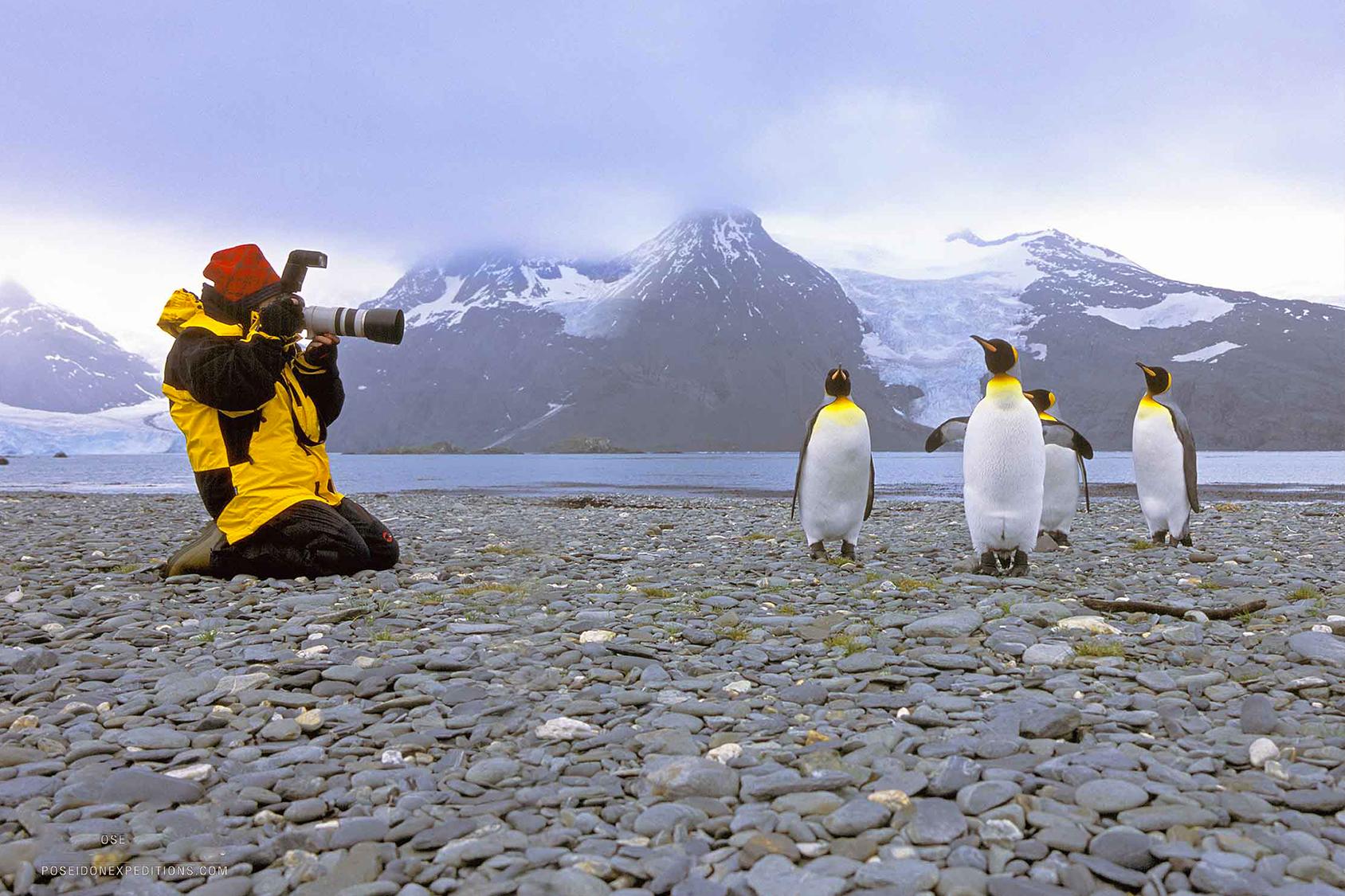 Niente denti del giudizio né appendice: per lavorare in Antartide servono questi requisiti